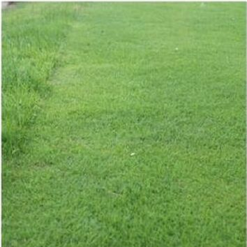 Long Drive Drought Tolerant Grass Seed Mix