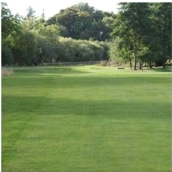 Golf Shade & Drought Grass Seed Mix