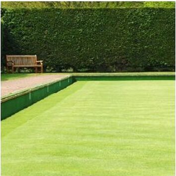 Prime Gold Bowling Green Grass Seed Mixture